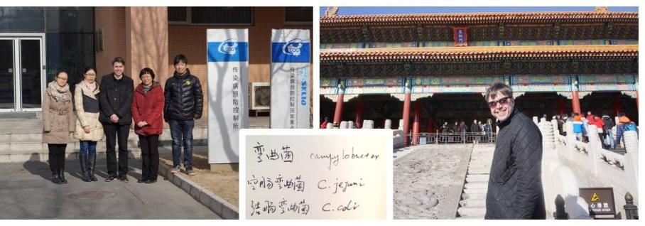 2015_china_sam